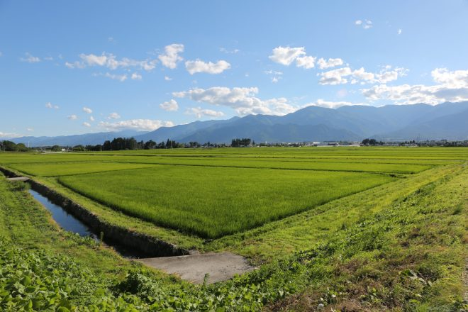 Farms of Azumino, Japan