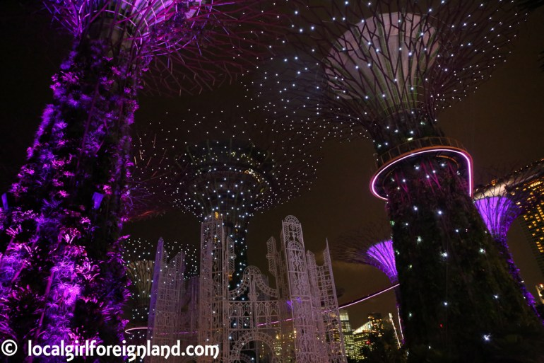supertree-grove-gardens-by-the-bay-night-singapore-9077.JPG