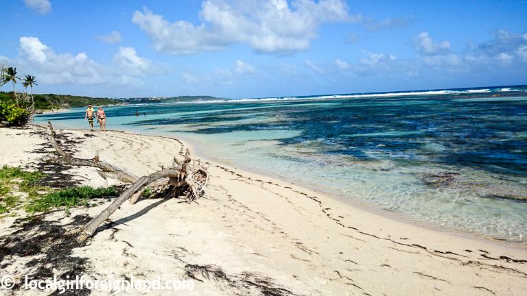 Plage-de-Bois-Jolan-Guadeloupe-2055