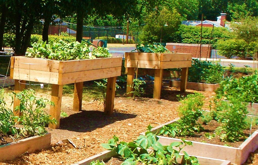 Why Raised Gardening Beds Are So Beneficial, and The Best ... on Raised Patio Designs  id=17909