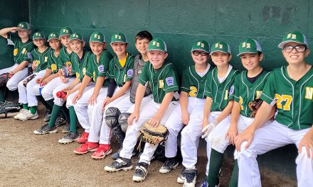 Great run for district champion NRLL 11-year-old All-Stars