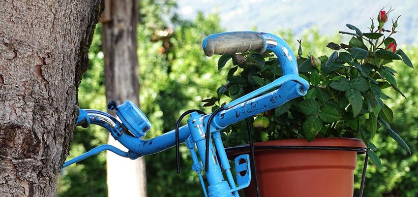Piantala con gli sprechi creare fioriere riciclando for Fioriere fai da te