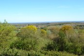 May Day view to Shipbourne from near Ightam Mote