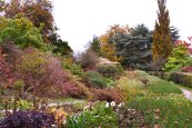 Emmetts Garden, autumn