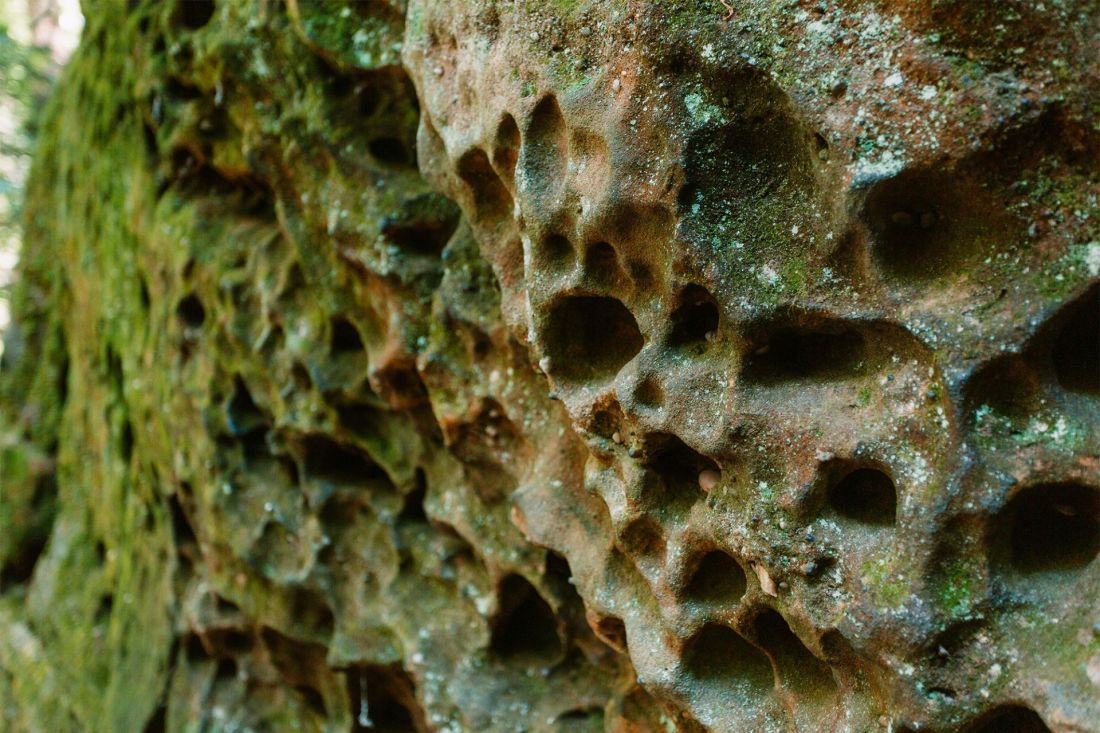 Moss covered rocks with holes