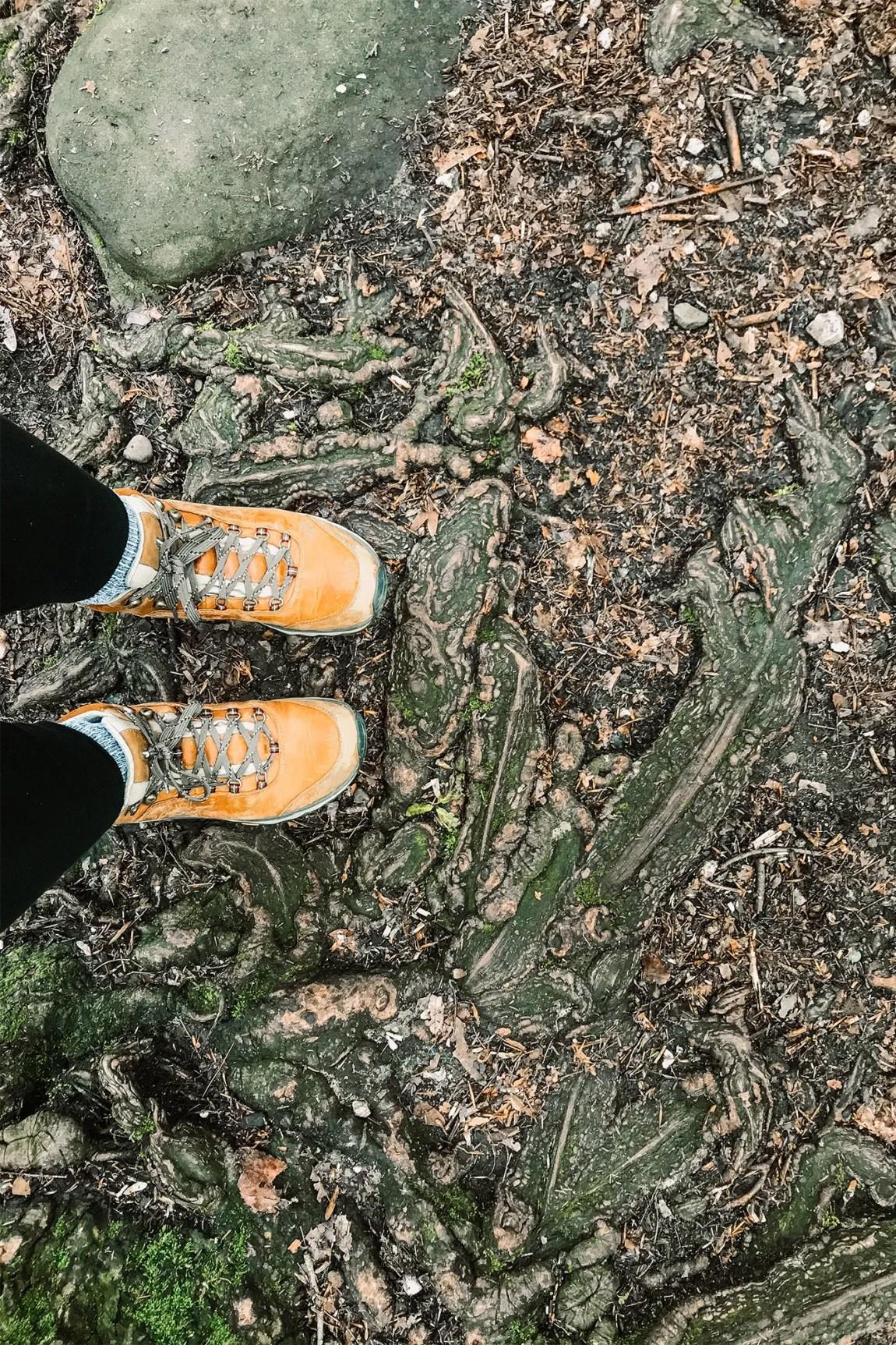 Hiking the Ledges