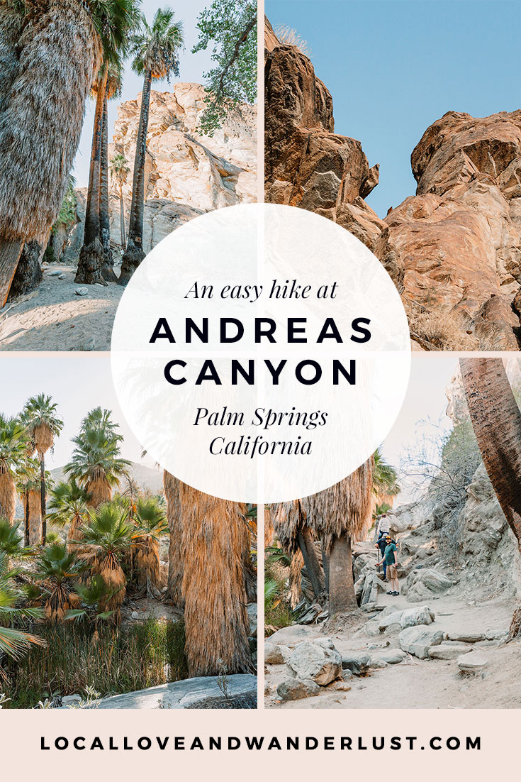An easy hike at Andreas Canyon Palm Springs California