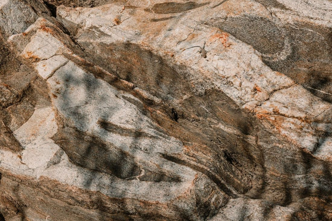 Lizard on patterned rock in Indian Canyons Palm Springs