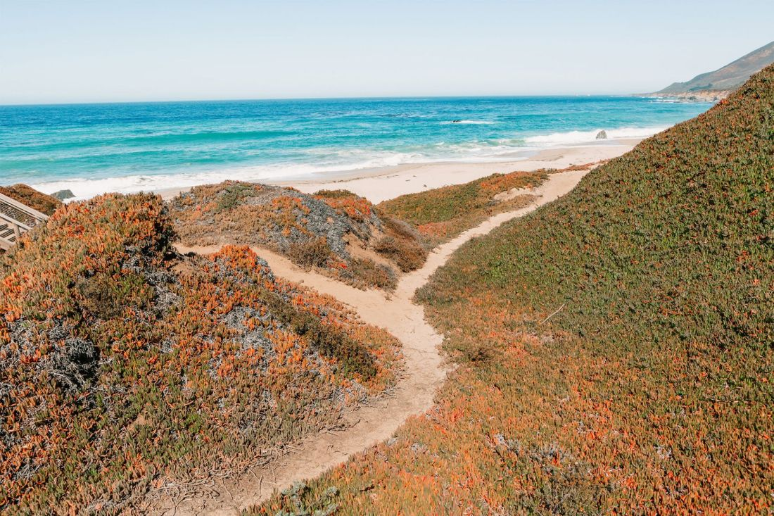A ragged sand trail leading to Garrapata State Beach in Big Sur, California | as seen on the Local Love and Wanderlust Blog