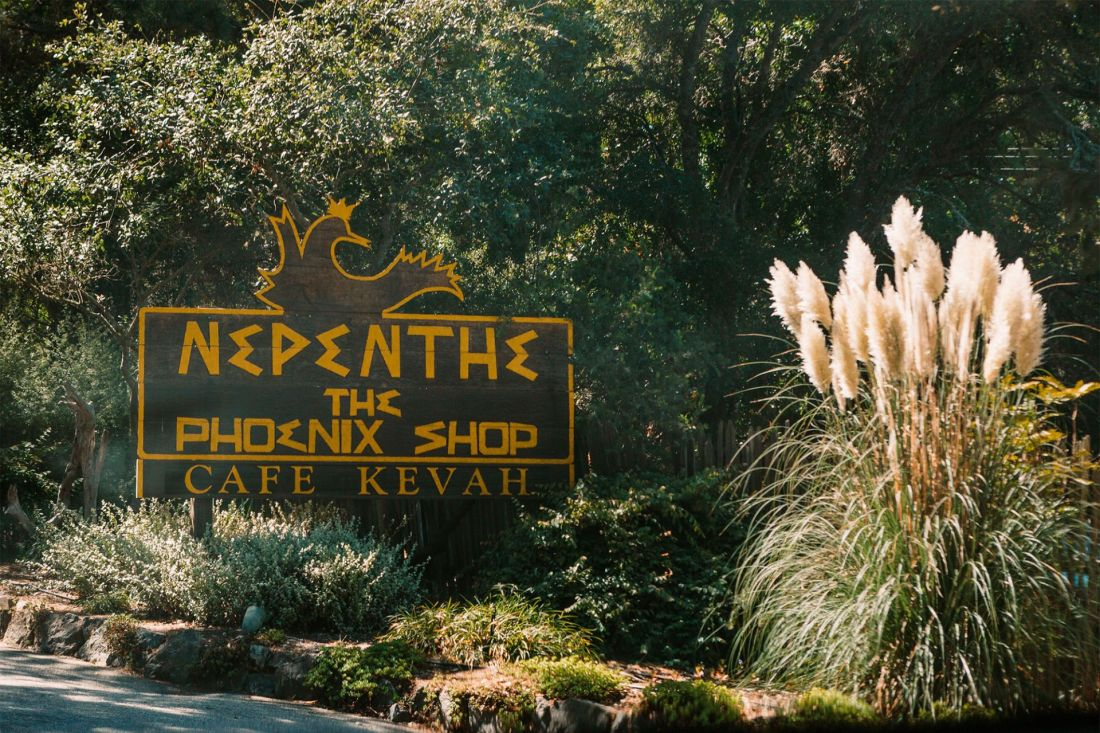 Nepenthe Big Sur sign in the woods | as seen on the Local Love and Wanderlust Blog