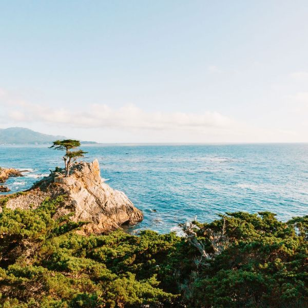 Where to Stop Along the 17-Mile Drive in Monterey, California