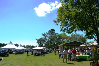 Organic Feast of Fields 2014 - Sunny Day