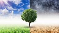 Covering Climate Collaborative