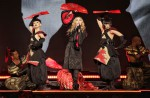 Madonna's gig doesn't live up to expectations, say local fans and celebs - 16