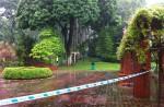 Teen terror kills man praying in Ang Mo Kio garden - 8