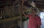 Chaining up mentally ill illegal in Indonesia but many still do it - 10