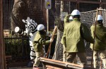 Tokyo zoo stages'zebra escape' - 8