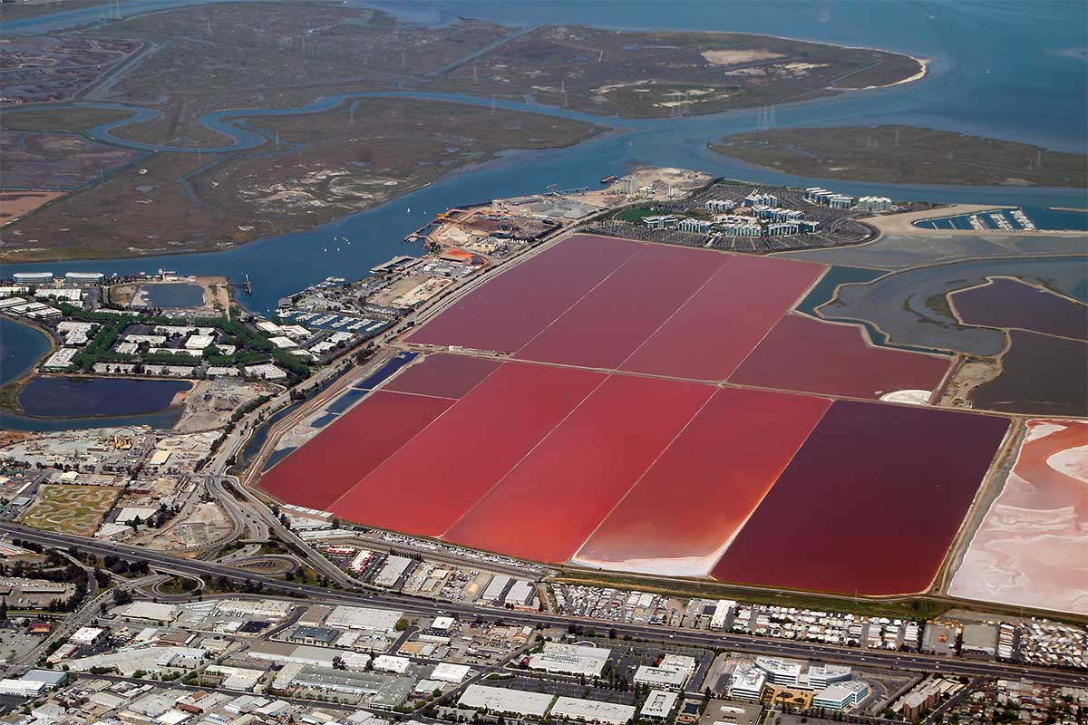 Cargill's decision not to appeal salt pond ruling cheers area environmentalists