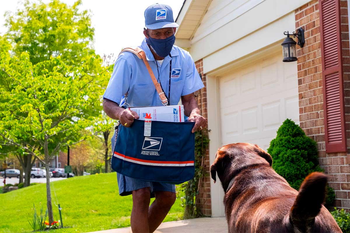 San Francisco among nation's worst cities for dog attacks on postal workers