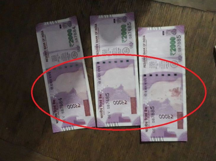 2 farmers receive 'genuine' Rs 2000 notes without Gandhi image from SBI
