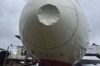 The bird hit the nose of the aircraft, damaging the radome