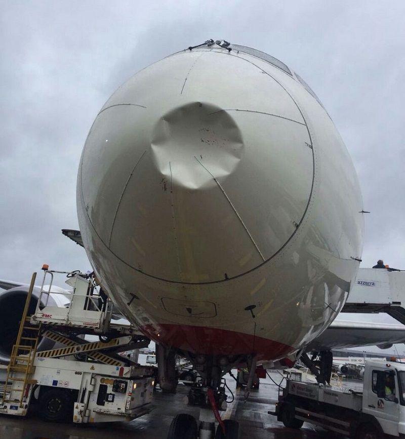 Air India flight grounded after bird hits aircraft's nose, damages radar