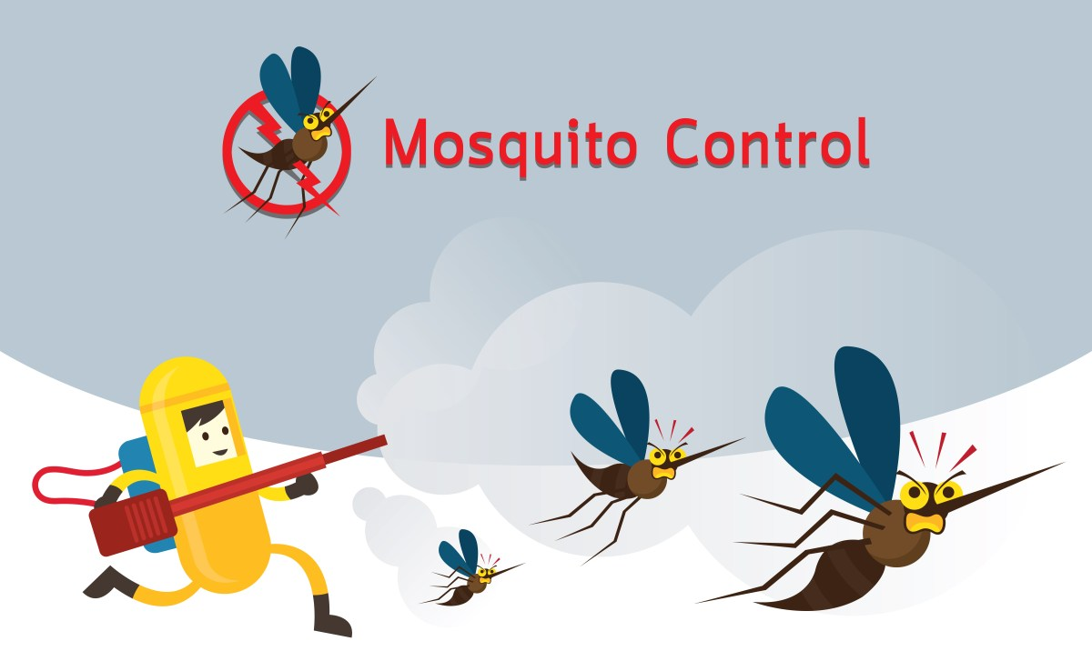 Mosquito spray in Plano