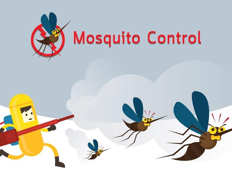 Mosquito spray in Plano