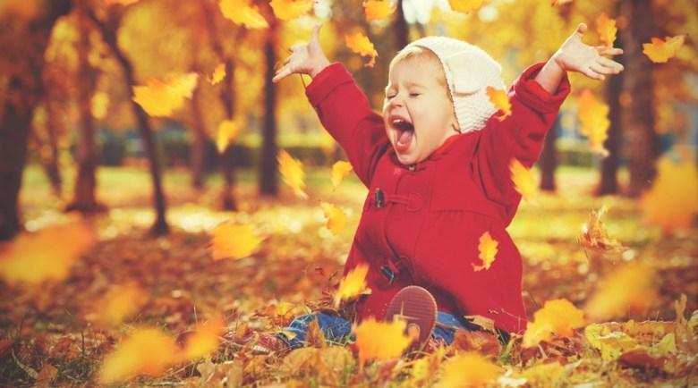 fall travel