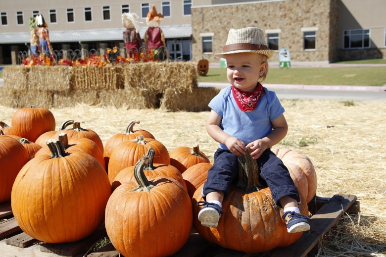 pumpkin patch, heritage farmstead museum, plano, pumpkin patches, things to do this weekend
