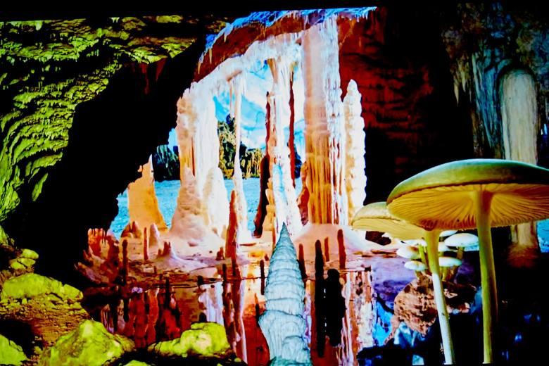 joshua king, aurora, downtown plano mural project