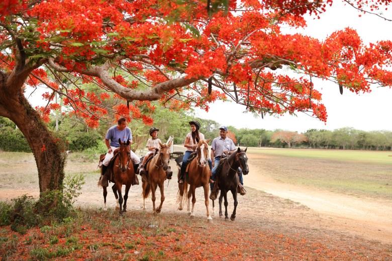 31 sports horseback ridding