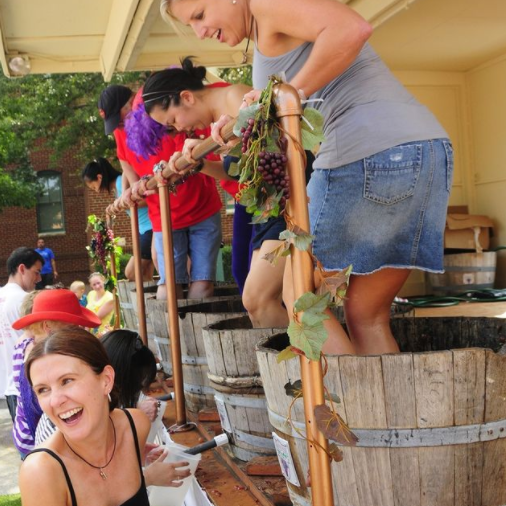 get ready for a foot-stomping (and grape-stomping!) good time at the 35th annual grapefest!
