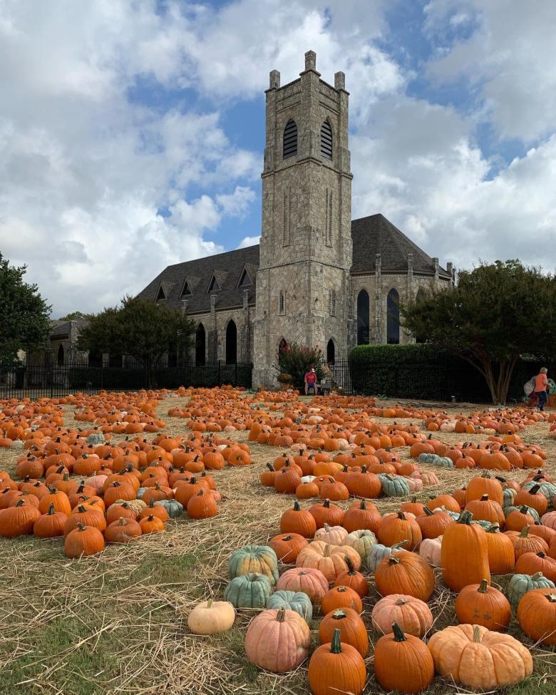 st james pumpkin