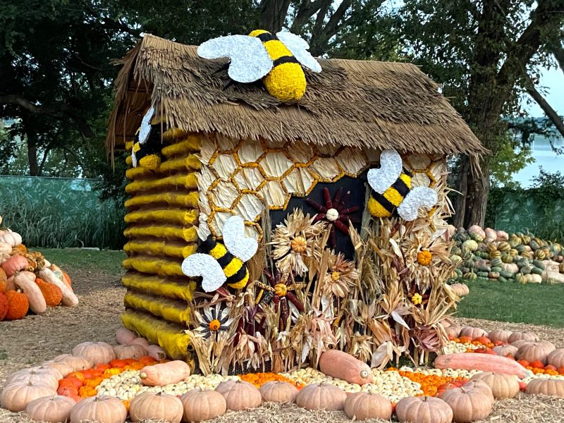 things to do this weekend in dallas, bug out at autumn at the arboretum! this year's theme? bugtopia!
