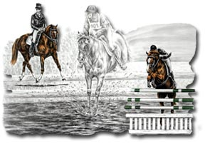 Equestrian Eventing Dressage Cross Country Amp Jumping