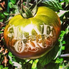 Live Oak Tomato