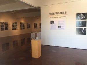 Cabrillo Gallery Photography