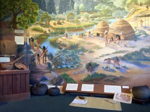 The museum has various rooms educating about local nature and culture, including the Ohlone Room.