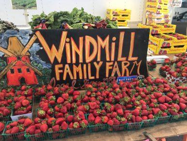 Windmill Family Farm