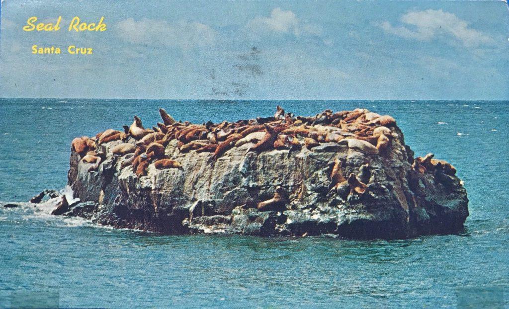 Seal Rock Santa Cruz