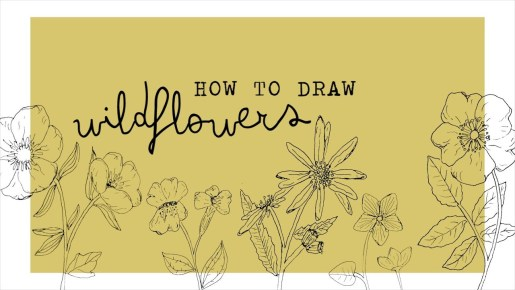 Video: How to Draw Wildflowers
