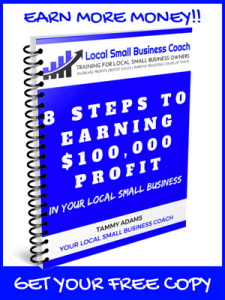 8 Steps to 100K in Profits ebook