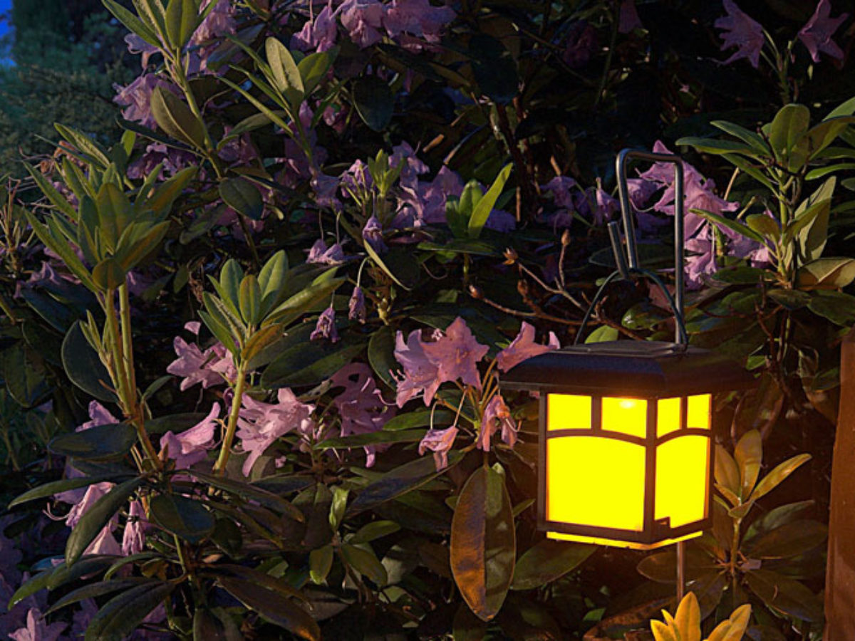 how to add outdoor lighting in tucson