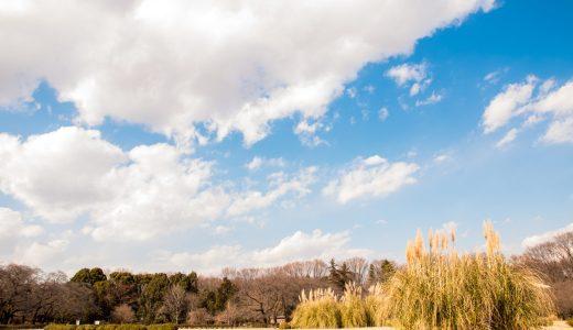 【神代植物公園】公園すべてが植物の撮影スポット!ここは広大なテラリウム!