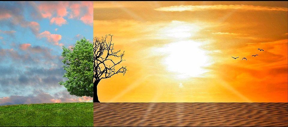 Changement climatique illustration