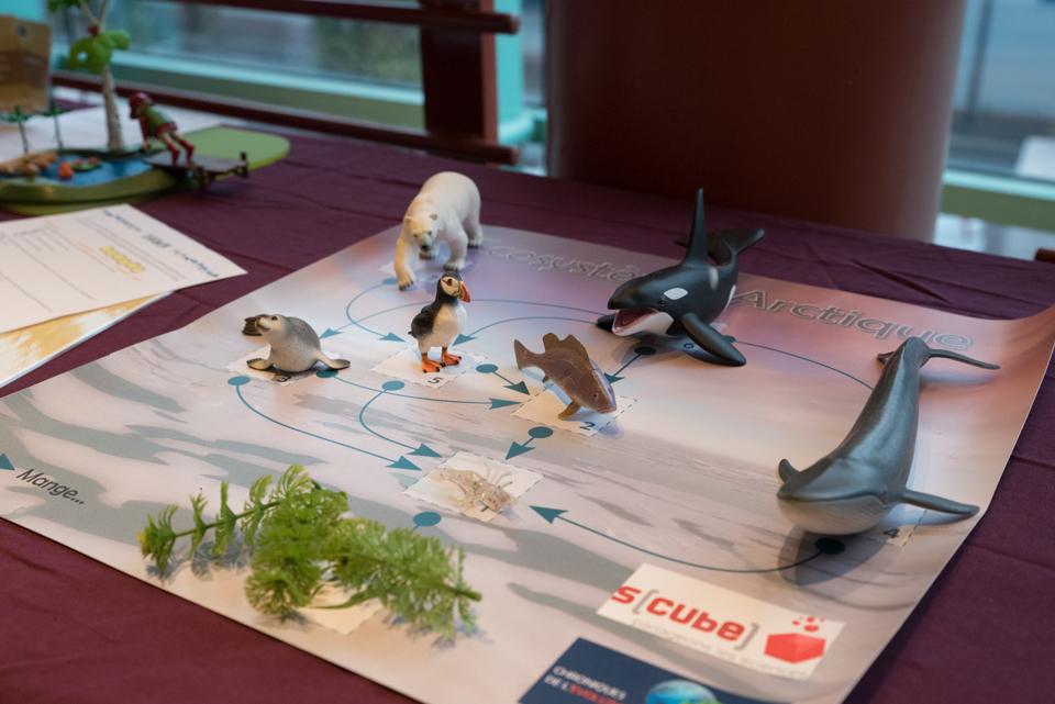 Exposition Evolution jeu (crédit photo : Angélique Gilson)