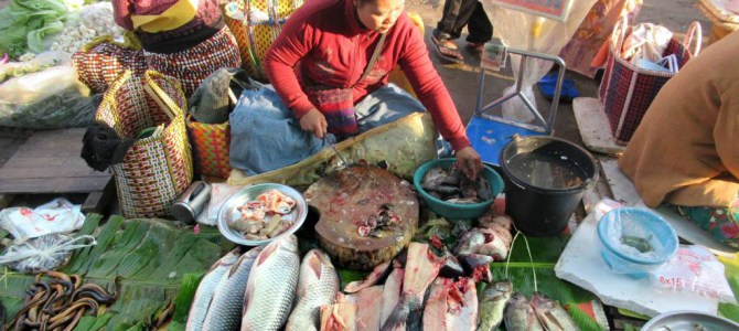 Asia's rising appetite for meat & seafood will 'strain environment'