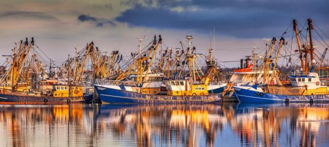 Record high profits for EU fishing fleet linked to use of sustainable methods