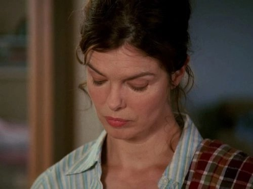 Jeanne Tripplehorn in Big Love